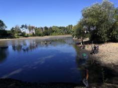 Výlov rybníka Studený