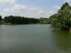 Rybník Studený