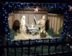 Rozsvícení vánočního stromu, betlém